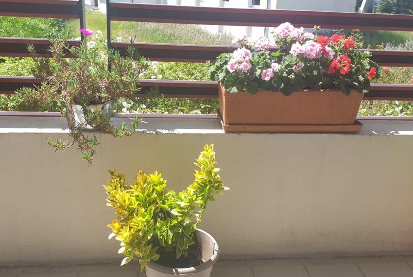 balcon juin